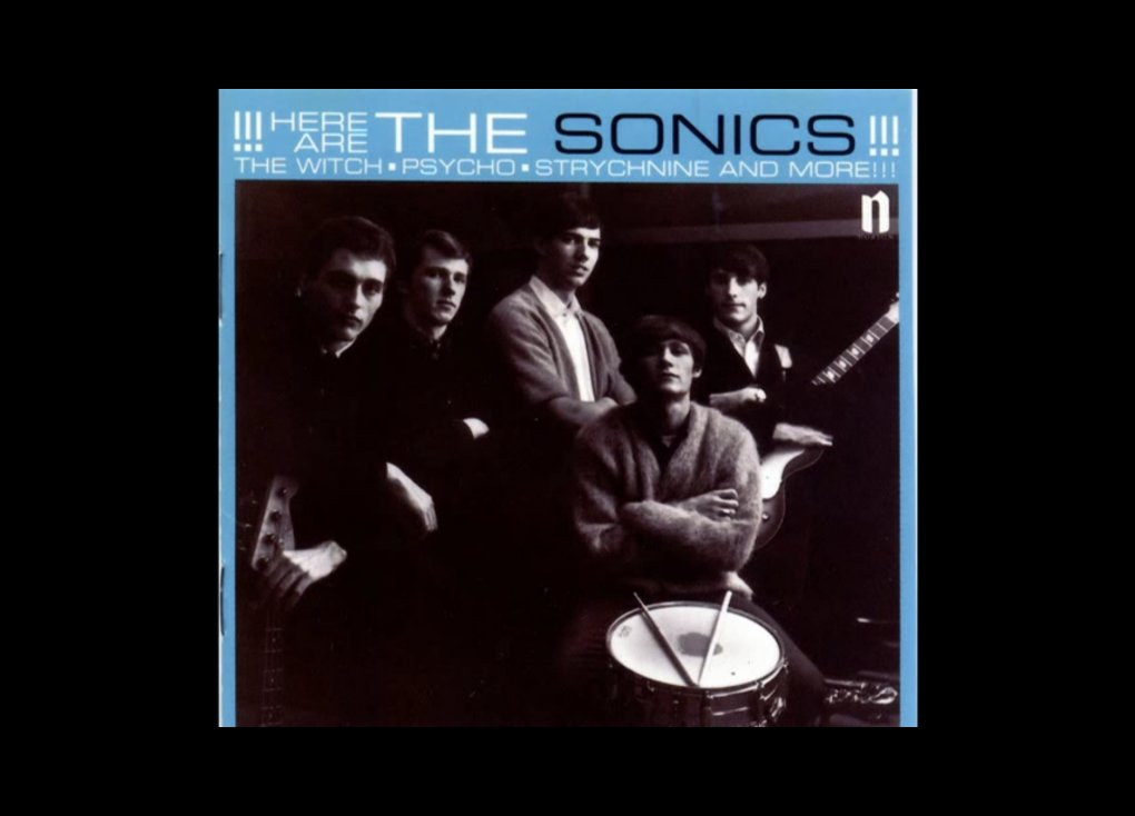 The Sonics -The Witch